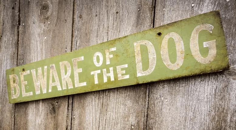 Dog bite injury lawyers